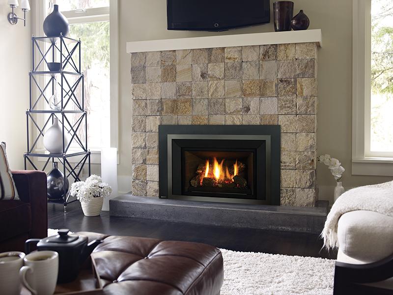 Regency Gas Fireplace Insert E21 Fireplaces